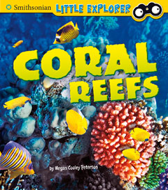 Smith Coral Reefs