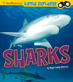 Smith Sharks
