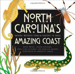 north-carolinas-amazing-coast