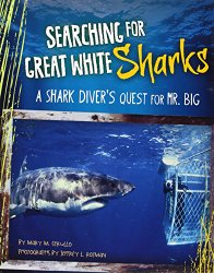 searching-for-great-white-sharks