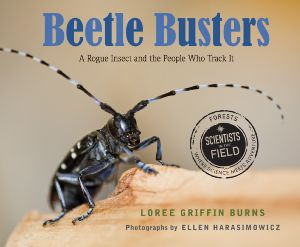 SITF Beetle Buster