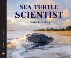 sea-turtle-scientist