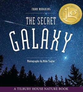 The-secret-galaxy