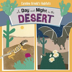 day-and-night-in-the-desert