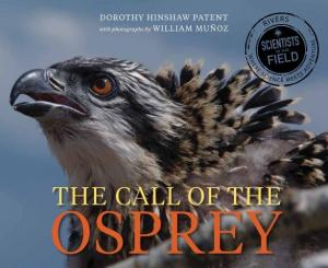 Call of Osprey