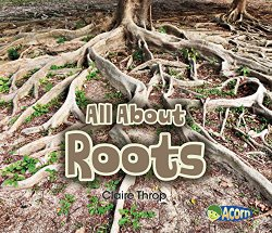 all-about-roots
