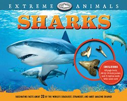 extreme-animals-sharks