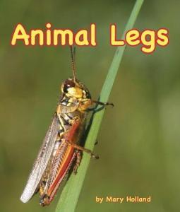 animal-legs