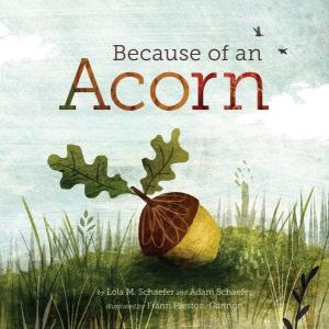 because-of-acorn-1
