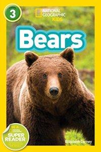 ngk-bears