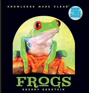 see-thru-frogs
