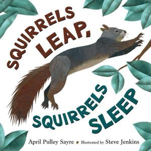 squirrels-leap